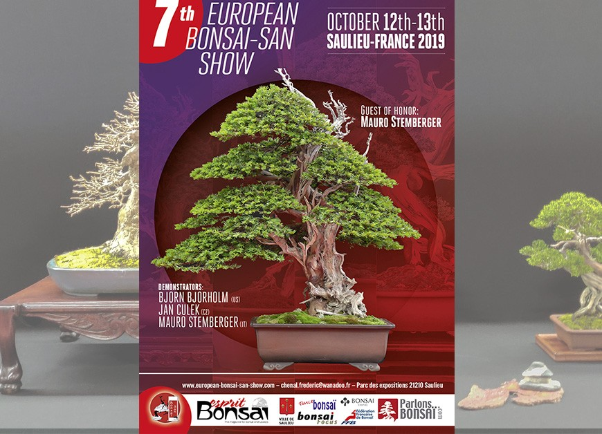 7 European Bonsai Show 2019